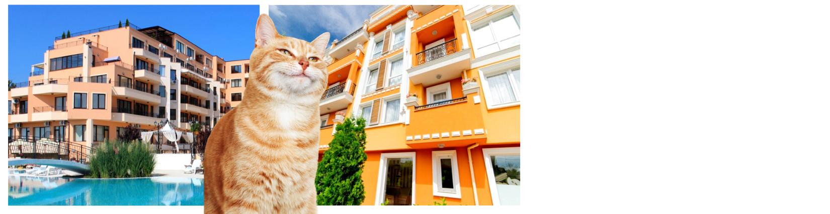 Апартаменты без таксы поддержки<br> на море от 21 000 евро