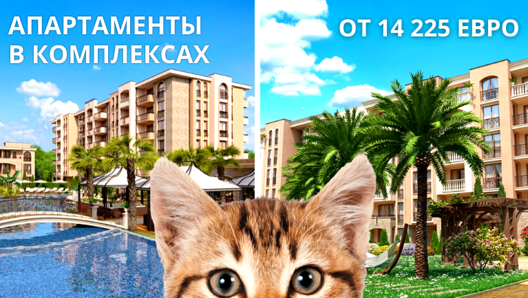 Apartments in complexes<br> from 14,225 euro and 50m from the sea