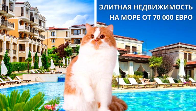 Элитная недвижимость<br> на море от 70 000 евро